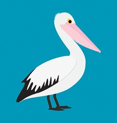 Pelican in format vector