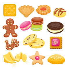 different cookie cake isolated vector image