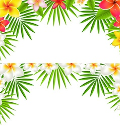 Tropical flowers border set vector
