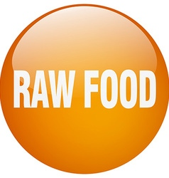 Raw food orange round gel isolated push button vector