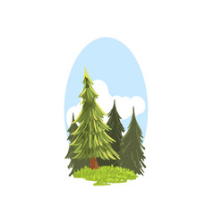 Detailed hand drawn landscape scene with evergreen vector