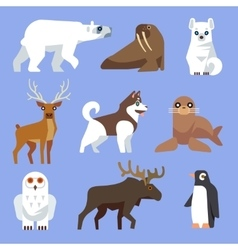 North arctic or antarctic animals and birds vector
