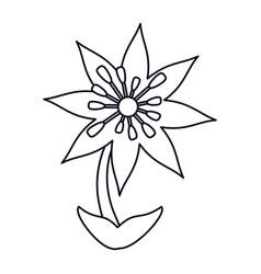 Plumeria flower decoration line vector