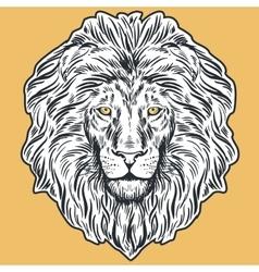 Hand drawn lion head vector