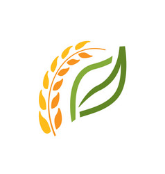 wheat spike symbol vector image