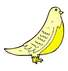 Comic cartoon bird vector