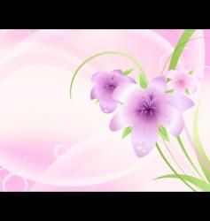 spring blossom background vector image
