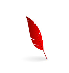 Red feather vector image