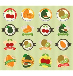 Set of various fresh fruit premium quality tag vector