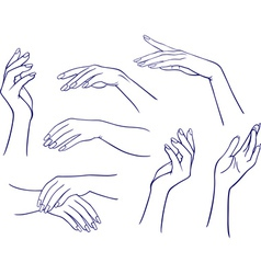Woman hands collection vector