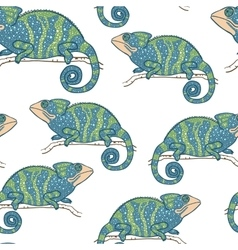 Seamless wallpaper with chameleon isolated on vector