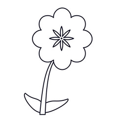 Canna flower decoration line vector