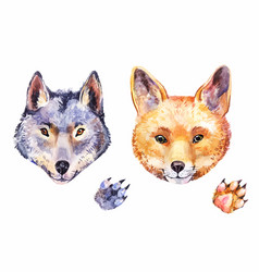 Cute watercolor fox and wolf hand-drawn animals vector