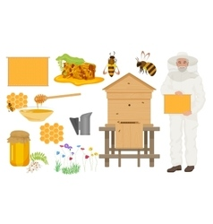 Beekeeping color icons set man beekeer in special vector