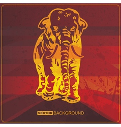 Grunge card with Elephant vector image