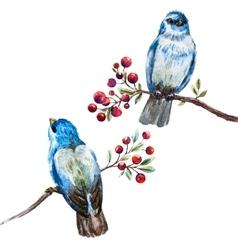 Nice watercolor birds vector