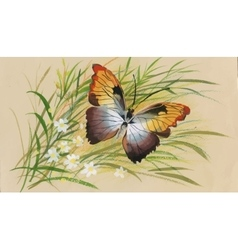 Colorful watercolor pattern with butterfly and vector