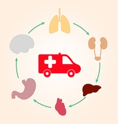 Medical scheme infographics ambulance and human vector