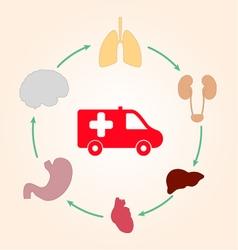 Medical scheme infographics ambulance and human vector image