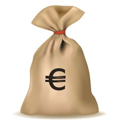 money bag with euro vector vector image