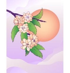 Oriental cherry and moon vector