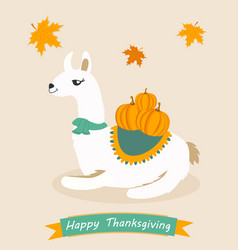 Poster for thanksgiving day with lama and pumpkin vector