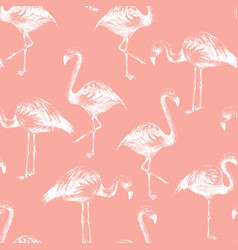Seamless pattern with hand drawn flamingoes vector