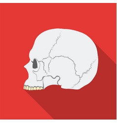 Skull icon in flate style isolated on white vector