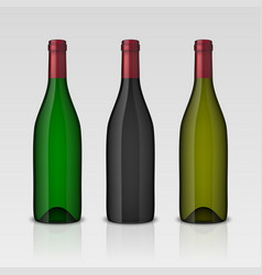Set of 3 realistic wine bottles without vector