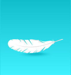 White feather falling vector