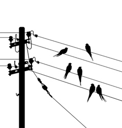 Birds migration white black vector