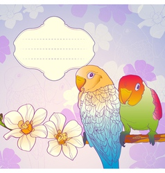 Parrots on a branch vector image