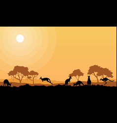 beauty kangaroo on park scenery silhouettes vector image