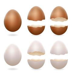 Broken eggs cracked open easter eggshell design 3d vector