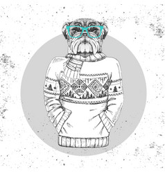 Retro hipster animal bulldog dressed in pullover vector