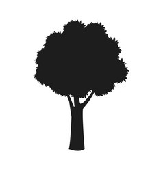 Silhouette tree trunk stem branching image vector