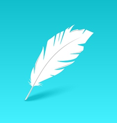 White feather isolated on blue background vector image