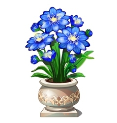 Bright blue flowers in beautiful ceramic pot vector