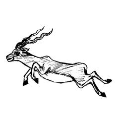 Jumping antelope vector