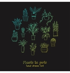 Set of plants in a pot hand drawn doodle sketch vector