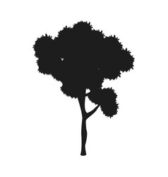 Silhouette tree plant natural design image vector