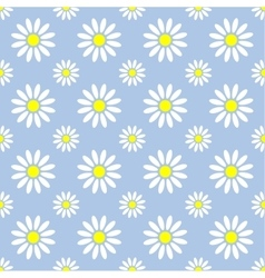 Abstract summer camomile seamless pattern vector