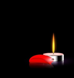 candle and red petal vector image vector image