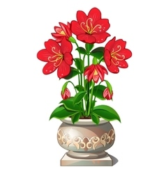 Bright red flowers in beautiful ceramic pot vector