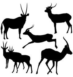 Antelopes silhouettes vector