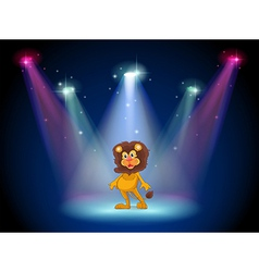 A stage with a brave lion in the middle vector image vector image