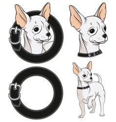 Set of color with a Chihuahua vector image vector image