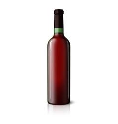 Blank green realistic bottle for red wine isolated vector image