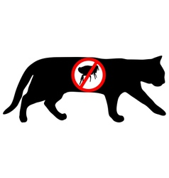 Cat flea prohibited vector