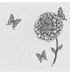 Black-and-white flower with butterflies hand-drawn vector